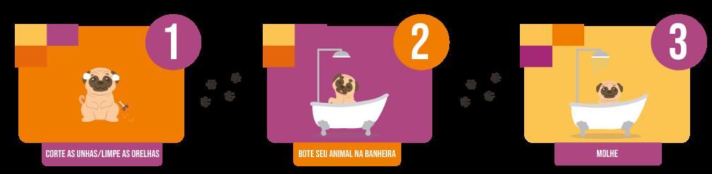 zoomed-clinica-veterinaria-info-01-atualizado